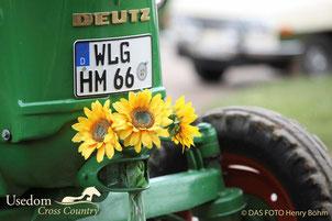 Nicht nur was für die Landwirtschaft, sondern auch fürs Auge. Foto: Henry Böhm