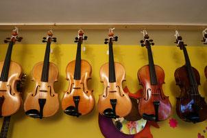 フィドル バイオリン