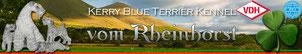 Kerry Blue Terrier Züchter aus Nordrhein-Westfalen