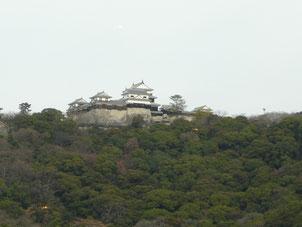 窓から眺めた松山城