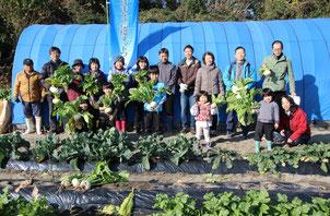 アマモ・アオサで育てた野菜収穫体験