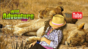 wild adventure girls, lions, african lions, youtube, kids show