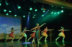 DANZA CLASICA: Carrera privada de danzas.