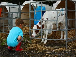 Urlaub auf dem Bauernhof Eifel