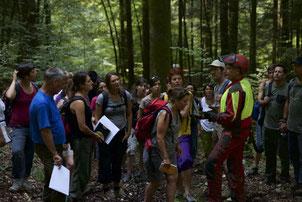 Forstliche Waldpädagogik