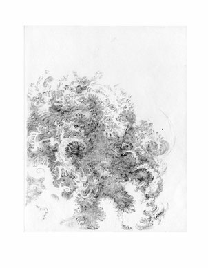 Matthias-Wyss-Kupferstich-Kaltnadel-Copper-Engraving-Drypoint-Cycle-2008–2009-Printing-Plate-20X25-Cm-N°6