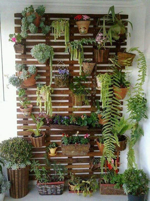 www.jardinerasdemadera.blogspot.com