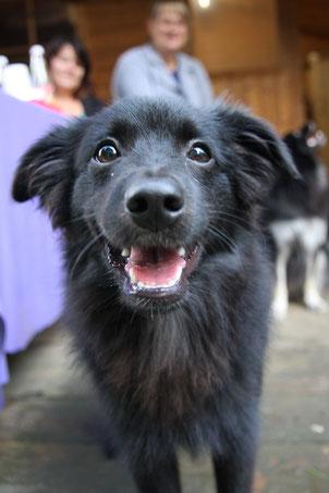 Jasper heißt er jetzt und ist sechs Monate alt.