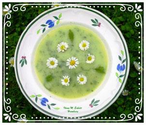 Wildkräuter-Suppe, Basenfasten, Ilona Schütt, Hamburg
