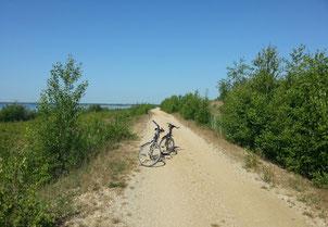 Radfahren am Cospudener See unweit unserer Ferienwohnung