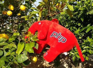 ElePHPant on Tour 2015 (Doris Schuppe)