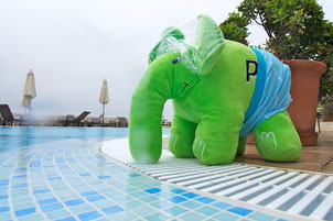 ElePHPant on Tour 2014 (Ulf Wendel)