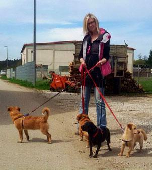 Eine ganz liebe, große Hilfe ist Marion : Mädchen für alles. Sie macht Tierarztfahrten, führt die Hunde spazieren und kümmert sich um Pflegekatzen.