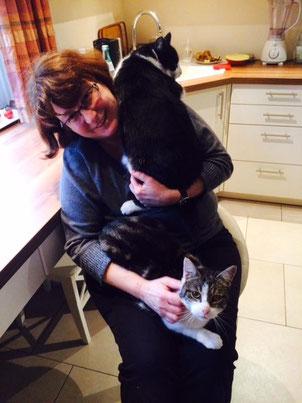 Katzenstreichlerin Regine versteht es einfühlsam mit jeder Katze umzugehen.
