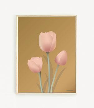 Tulips Amber