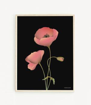 Poppy noir