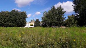 Unser Schulgelände mit Bienen-Wiese, Spiele-Hütte und grünem Freiluft-Klassenzimmer vor unserem Schulgebäude