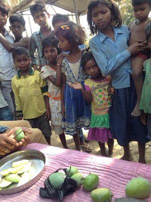 マンゴを食べに来た村の子ども達。
