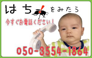 今すぐお電話050-3554-1864