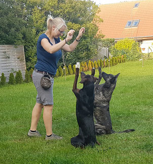 Karen beim Hundetrainng
