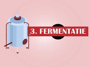 Hoe wordt rode wijn gemaakt? Stap 3 Fermentatie