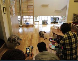 ふぉとさい写真俱楽部の撮影会風景