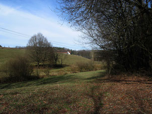 Längstlerhof bei Sembach