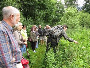 Marc Klaß gibt Tipps zur Bestimmung der Pflanzenarten.