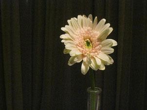 「花は咲く」みなさんで歌いました。ガーベラいただいちゃった♡
