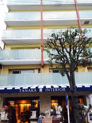 タナカインテリア旧店舗