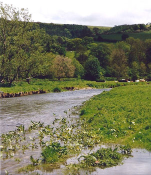 River Teme near Leintwardine