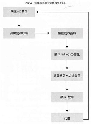 筋骨格系悪化の負のサイクル