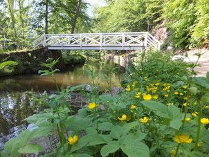 Brücke vor dem Wehr der Marienmühle