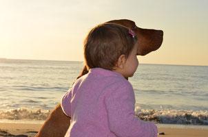 """Wichtig ist der Kinderschutz in """"Tiergestützte Pädagogik und Therapie"""" durch ein im Bild gezeigtes entspanntes und friedliches miteinander Umgehen von Hund und Kind."""