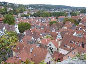 Dächer Tübingens (Bild: Doris Brötz)