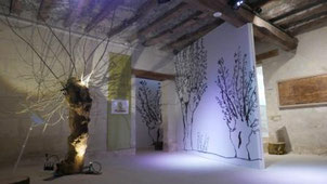 Exposition Bocages en bords de Vienne, Ecomusée du Véron 2018