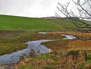 maerisch schlängelte sich das Schmelzwasser durch die Weiden