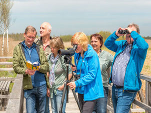 NABU-Birdwatch am Federsee