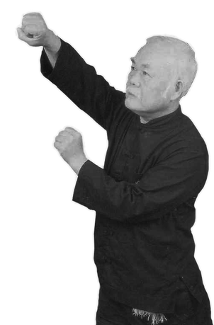SIFU SHUM PERFORMING THE WU STYLE FORM