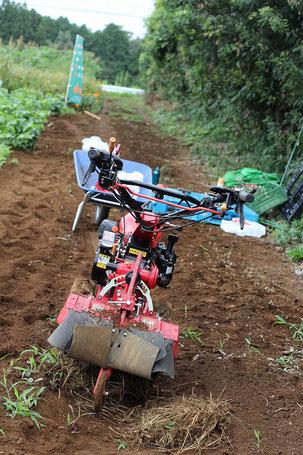 出番を待つ中耕機の写真