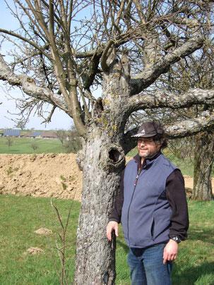 Ralph Langetepe bei der Niströhrenaktion Steinkauz 2015