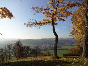 Blick in Richtung Kloster Rebdorf vom Frauenberg