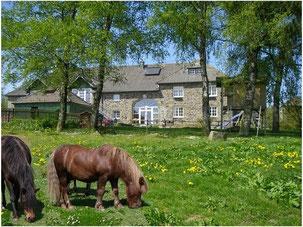urlaub auf dem Bauernhof Eifel Monschau