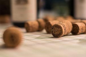 VinoLoire - Vincent Delaby - Excursions privilégiées dans les domaines vignobles du Val de Loire - Journée Diversité de la Loire