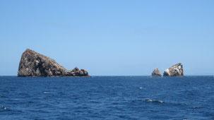 Gordon Rocks, Galapagos