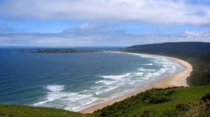 Catlins Conservation Park, The Catlins, South Island