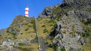 Cape Palliser, Lighthouse