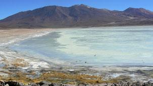Laguna Blanca, altiplano, Bolivia