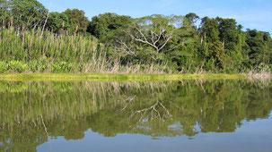 Parque Nacional Madidi, Madidi National Park