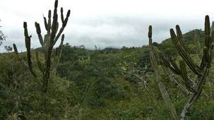 Samaipata Region